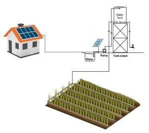 Domestic solar kit with drip irrigation